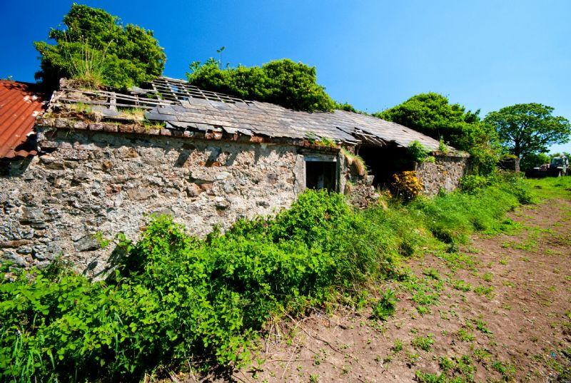 Derelict Hilltop Cottage - now a site