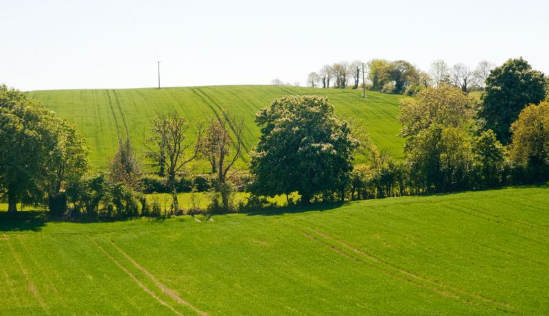 View from Mountpleasant Hilltop Cottage